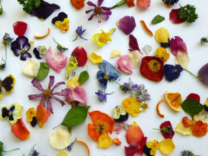 Uses for Dried Flowers