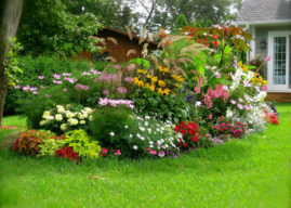 10 Steps to a Magnificent Garden