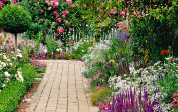 Create a Cottage Garden