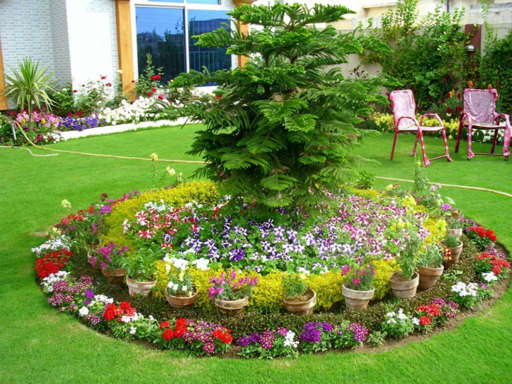 Genial World Of Flowering Plants